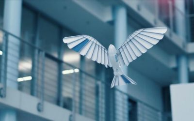 Robotic drone inspired by world's fastest bird can replicate movements